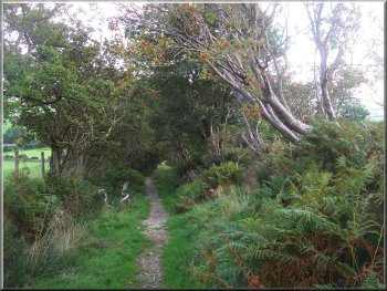 Yorkshire Walks - My Walking Diary route no 196